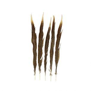 Veer fazant goud 38cm (5st.) *