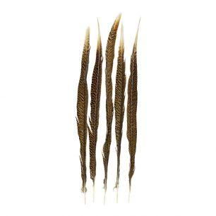 Veer fazant goud 50cm (5st.) *