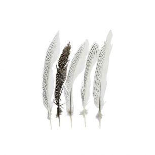 Veer fazant zilver28cm (5st.) *