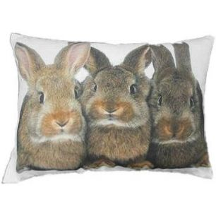 Canvas kussen 3 konijnen bruin 35x50cm