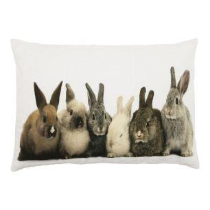 Canvas kussen konijntjes 35x50cm