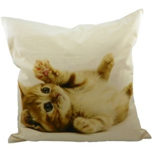 Canvas kussen kitten rood 50x50cm*