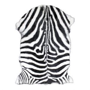 Vacht geit zebra