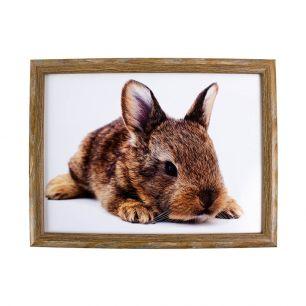 Schootkussen liggend konijn