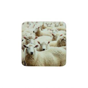 Onderzetter schapen (6)